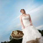 tampa bay wedding photographer rock the dress loving legacy 2