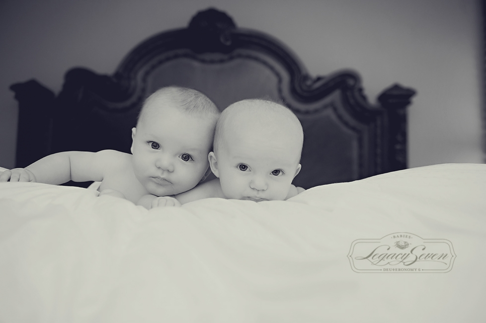 three month twins newborn photographer legacy seven
