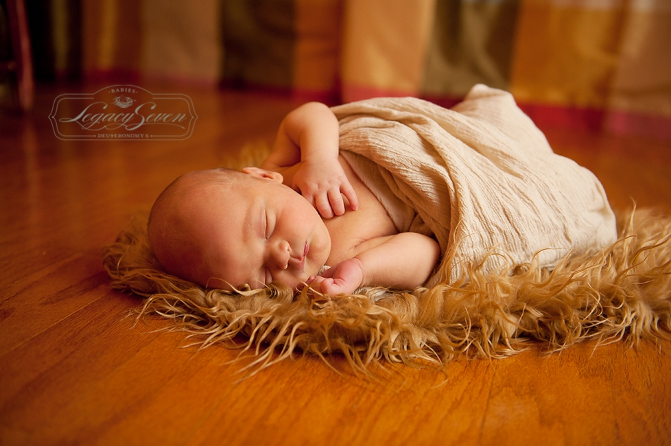 florida sibling newborn photographer a